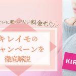 kireimo-icatch-0913-8-486x290